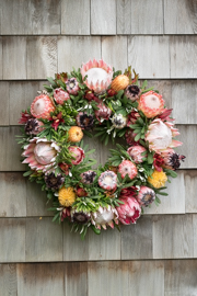 24 Inch Fresh Protea Wreath