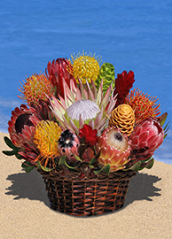Large Protea Tropical Arrangement