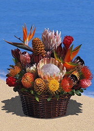 EX-Large Protea Tropical Arrangement